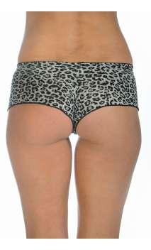 Boxer léopard shana